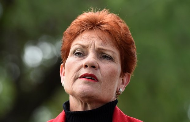 'Ill-informed, simplistic and facile' - education chief slams Pauline Hanson's autism remarks